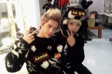 kimchi and aoora