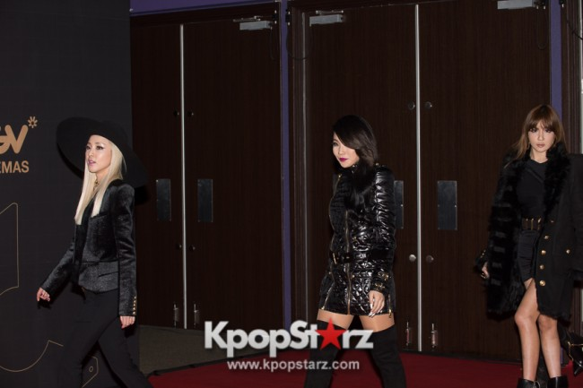 [PHOTOS] MNET Asian Music Awards 2013 MAMA in Hong Kong - 2NE1  on the Red Carpet - Nov 22 2013key=>0 count8
