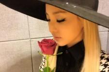 dara sentimental with a rose