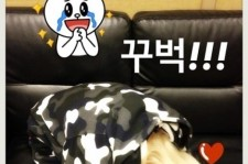 2ne1 dara bowing for fans
