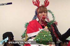 teen top niel human christmas tree