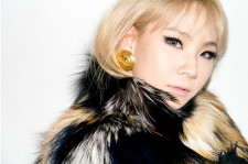 CL's involvement in this latest controversy is unfortunate.