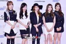 4Minute at The 20th Anniversary of the 'We Love Korea 2014 Dream Concert'