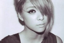 Amber of f(x)