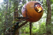 Stay Among The Treetops In The Free Spirit Spheres