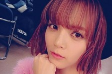 aoa jimin cat picture