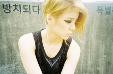 f(x)'s Amber