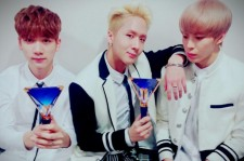 VIXX light stick Hyuk Ravi Hongbin