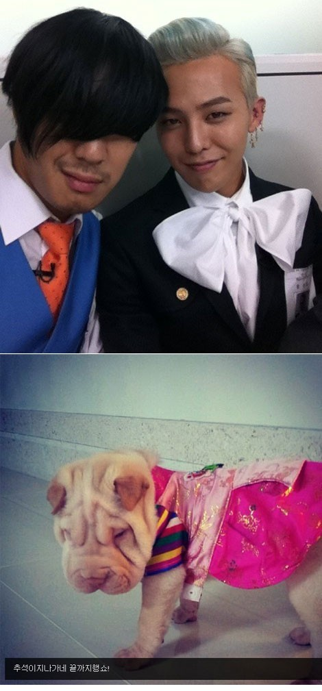 g-dragon puppy in hanbokkey=>0 count1