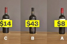 Expensive Wine Is For Suckers. This Video Shows Why