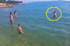 Two Clueless Guys Trying To Play Frisbee Will Make You Fall Off Your Chair
