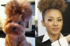 Dara and Doggy Doppleganger
