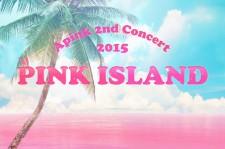 A Pink Concert