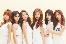 Apink Preparing For Comeback This September