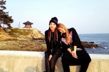 Dara and CL wrote letters for their fans.