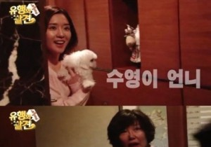 sooyoung family members