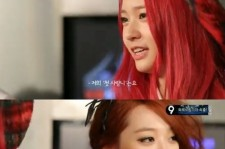 f(x) sulli haven't had first love yet