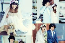lee hyori wedding pictures